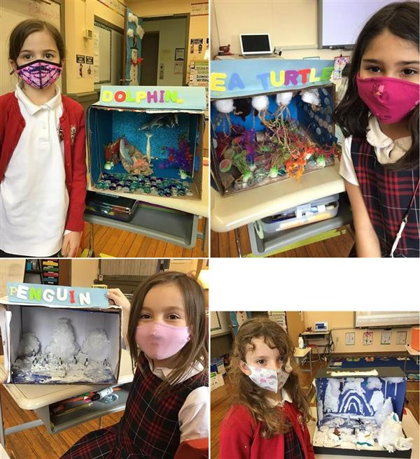 Second Grade Animal Projects